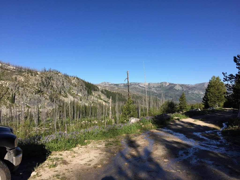 Our traverse started and ended at the Deep Lake trailhead which is reached by a dirt road from the Warren Wagon Road.