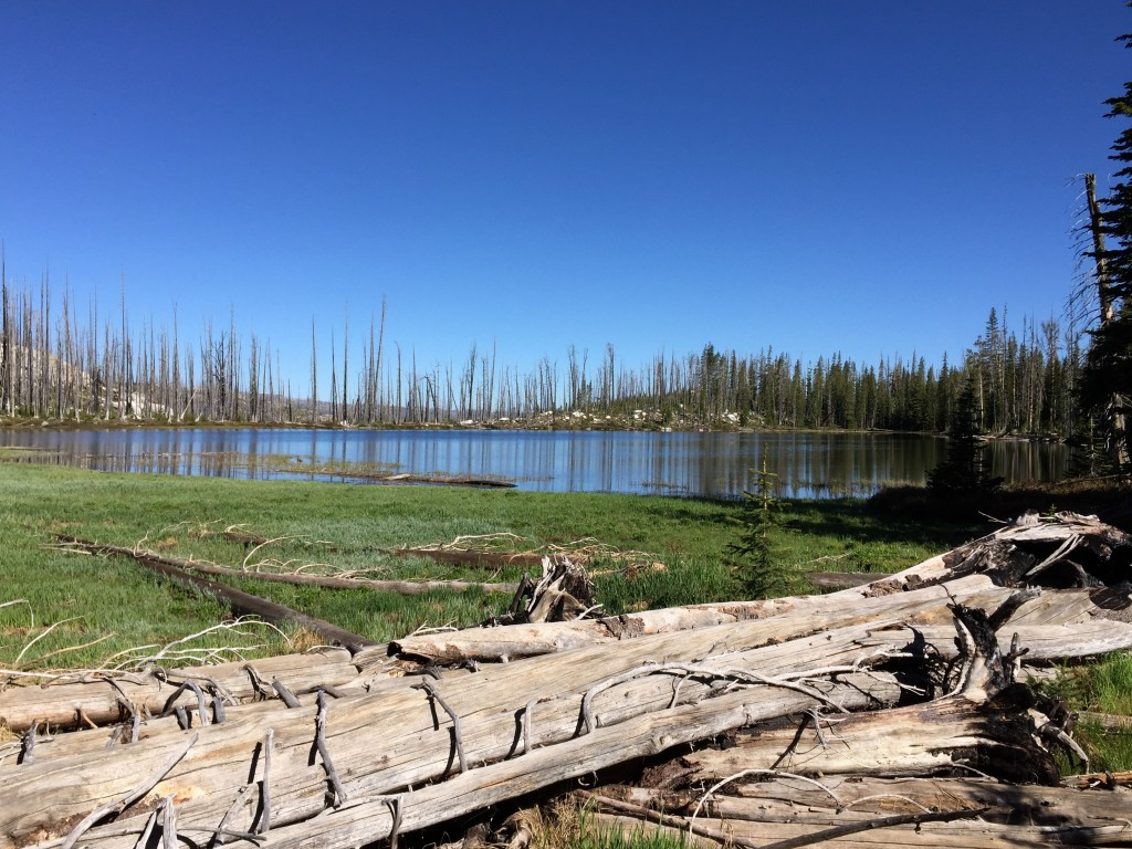 Trail Lake Diamond Ridge.