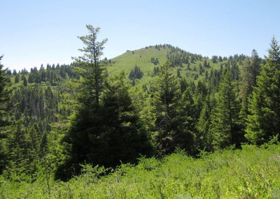 Iron Mountain. Ray Brooks Photo