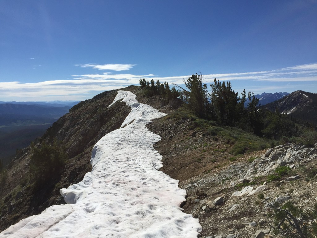 Once at the top of the southwest ridge turn east and walk over to the actual summit.