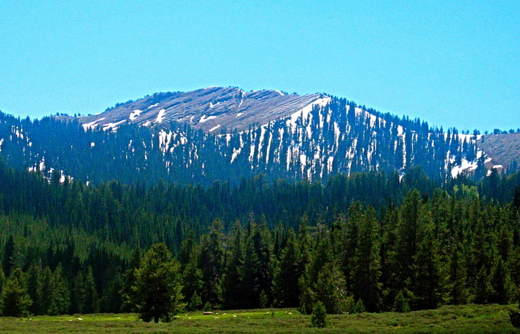 View looking south west from Franklin Basin (east of Franklin Idaho). There used to be a scout camp in the bowl below the bare rock on the ridge. I went there with my scout troop twice circa 1967-8. Russ Durrant Photo