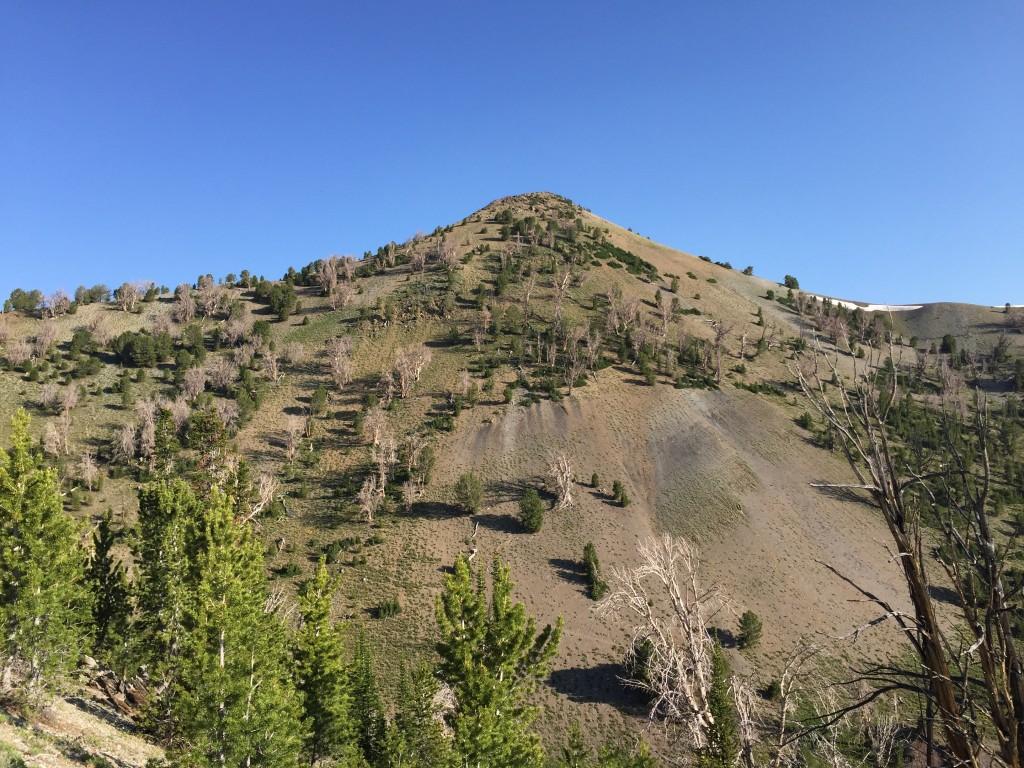 Peak 10356 viewed from the northeast ridge of Peak 10340.