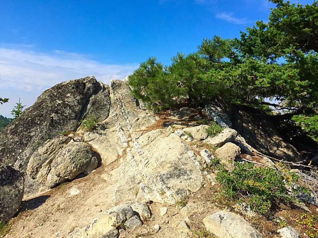 The highest point on Mores Mountain is a short uphill walk from the trail.