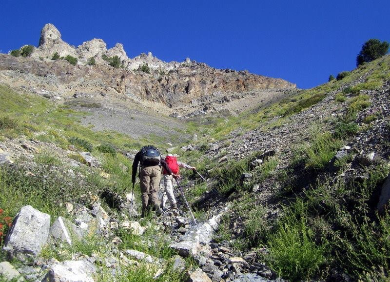 The lower gully. Deb Rose Photo