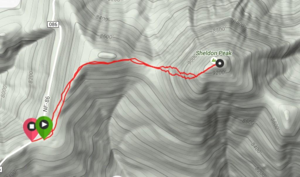 My GPS track for Sheldon Peak.