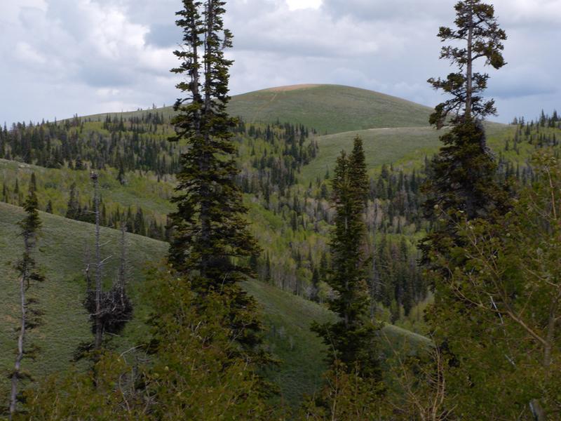 Trapper Peak. John Platt Photo